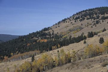 Okanogan Ecoregion scene